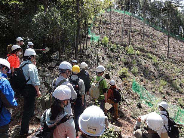 日本で唯一!<br>学内に33haの演習林