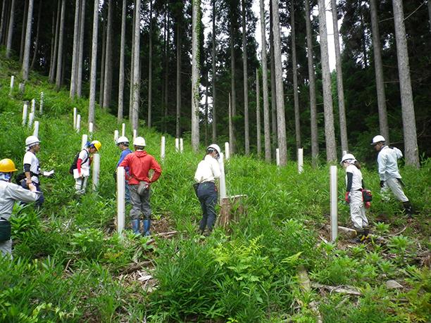 森林環境の維持・更新に必要な森林獣害対策の実践的な学び